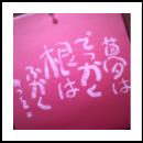 iinomiki_2